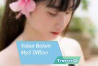 Video Bokeh Mp3 Offline
