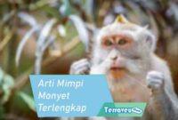 Arti Mimpi Monyet Terlengkap dari Berbagai Skenario Mimpi