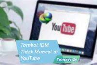 Penyebab Tombol IDM Tidak Muncul di YouTube