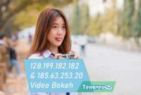 Video Bokeh Full IP